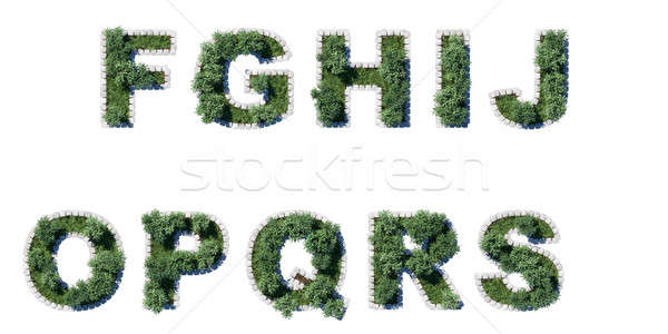 Trees and grass font with grey cubing border Stock photo © Arsgera