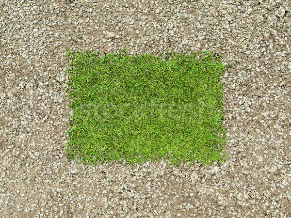 Environment: gravel frame and green grass patch Stock photo © Arsgera
