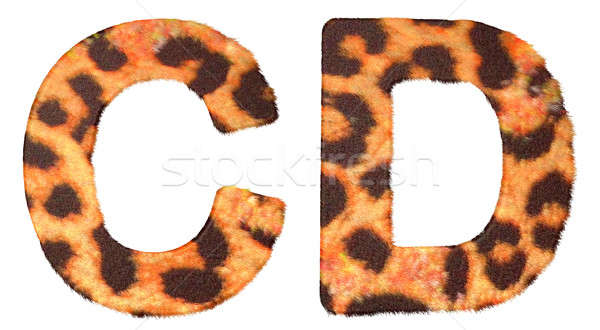Leopard fur C and D letters isolated Stock photo © Arsgera