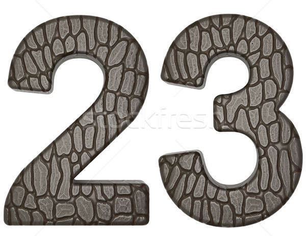 Alligator skin font 2 3 digits isolated Stock photo © Arsgera