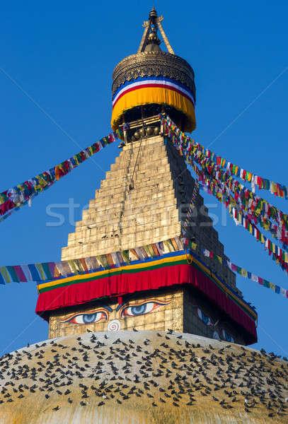 Budist budizm Nepal mavi seyahat bayrak Stok fotoğraf © Arsgera