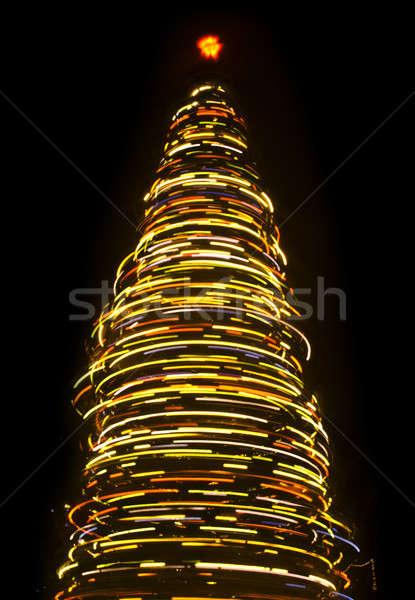 расплывчатый рождественская елка ночь черный аннотация природы Сток-фото © Arsgera