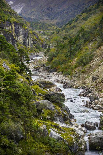 Rio floresta himalaia Nepal natureza Foto stock © Arsgera