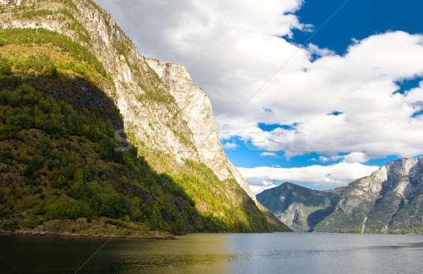 Norwegian fjords and blue sky Stock photo © Arsgera