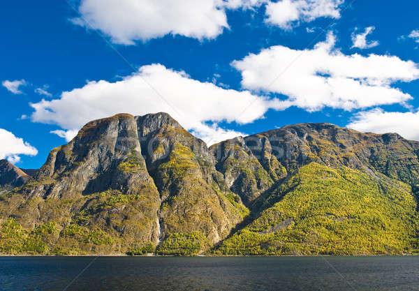 Norueguês montanhas céu rio nublado árvore Foto stock © Arsgera