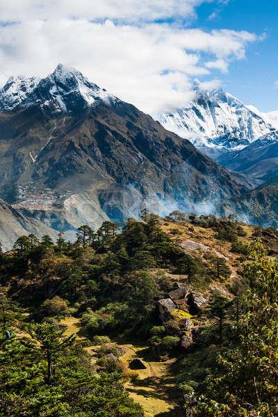 Aldeia floresta himalaia caminhadas Nepal árvore Foto stock © Arsgera