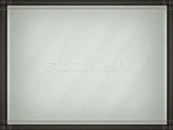 Gray mock croc or alligator skin background with stitched frame Stock photo © Arsgera