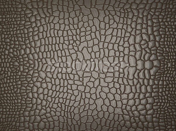 Grey Alligator skin: useful as texture or background Stock photo © Arsgera