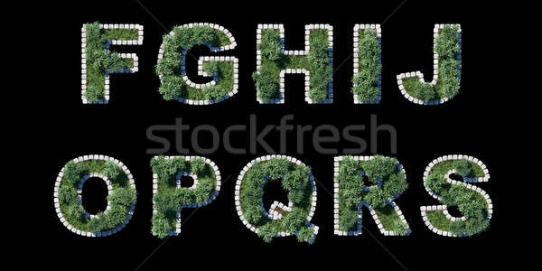 Stock photo: trees and grass font with grey cubing border on black