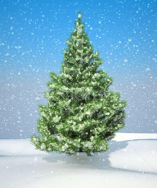 Snowbound Christmas firtree Stock photo © Arsgera