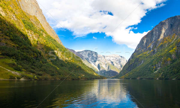 Mountains and fjord in Norway Stock photo © Arsgera