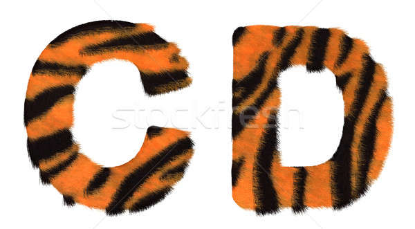 Tiger fell C and D letters isolated Stock photo © Arsgera