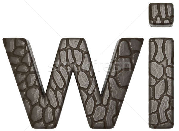 Alligator skin font w and i lowercase letters  Stock photo © Arsgera