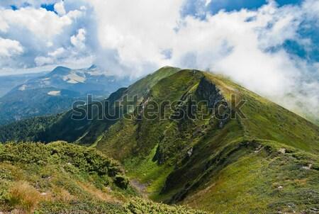 Carpathians landscape: on a mountain ridge Stock photo © Arsgera