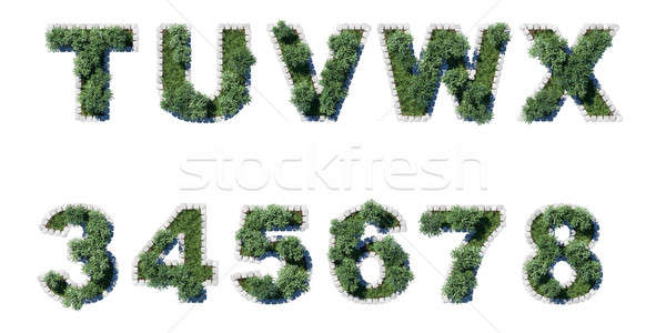 Green Garden set with grey cubing border Stock photo © Arsgera