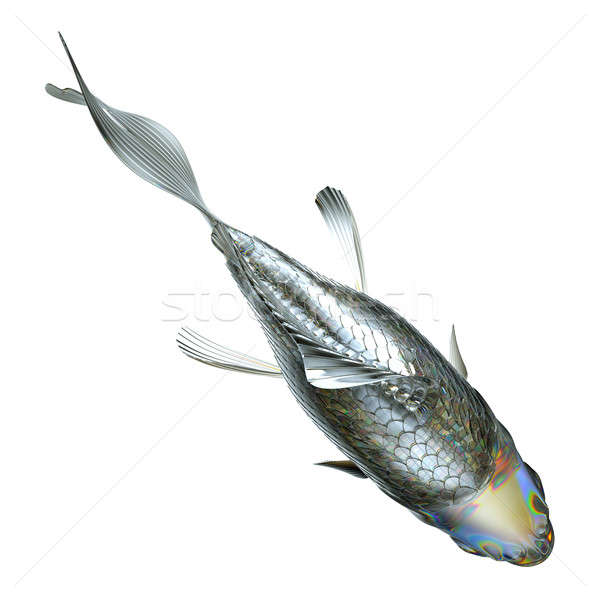 Top view of glass fish isolated  Stock photo © Arsgera
