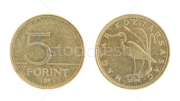5 Forint - hungarian money Stock photo © Arsgera