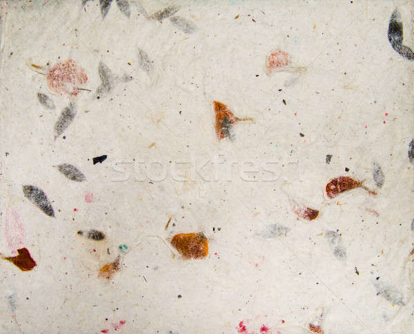 Handmade asian paper texture with leaves herbarium Stock photo © Arsgera