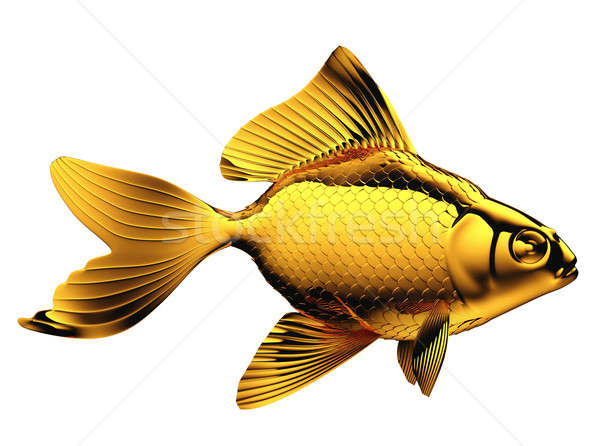 Goldfish with fins and scales isolated Stock photo © Arsgera
