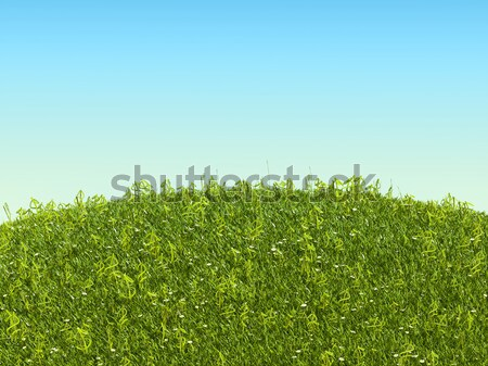 Conceptual US dollar grass symbols on the glade Stock photo © Arsgera