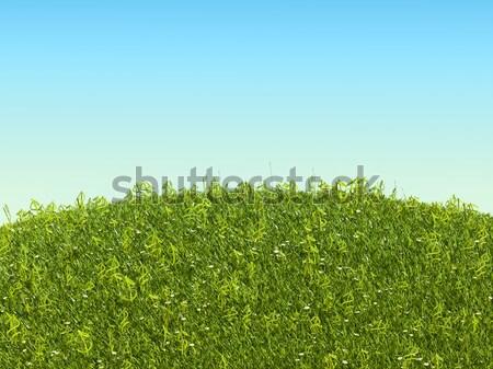 Dollár fű szimbólumok tisztás üzlet természet Stock fotó © Arsgera