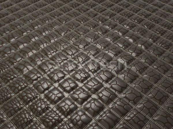 Alligator skin with stitched rectangles. Stock photo © Arsgera