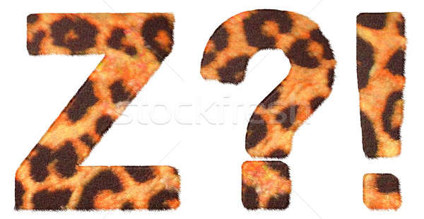 Stock photo: Leopard fur font Z and Wow, What symbols
