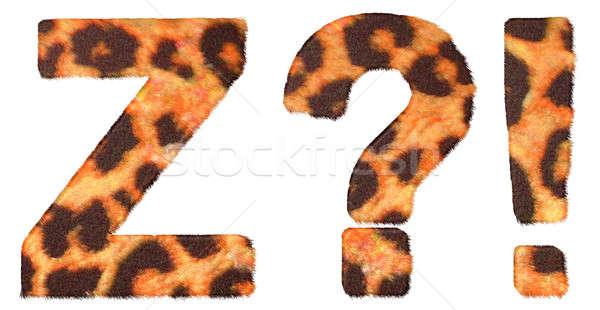 Leopardo pele fonte wow o que símbolos Foto stock © Arsgera
