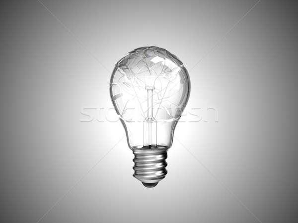 Smashed or burned lightbulb Stock photo © Arsgera