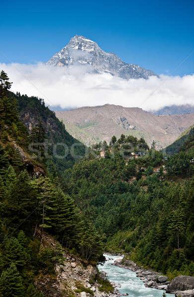Bergen landschap stream bos Stockfoto © Arsgera