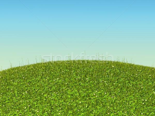 Zielona trawa krajobraz koniczyna rumianek kwiaty jasne Zdjęcia stock © Arsgera