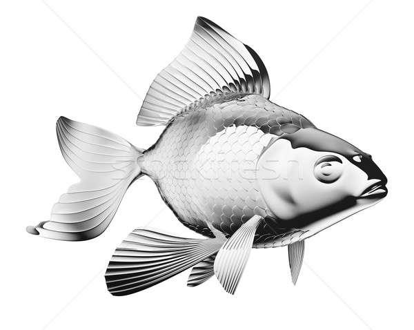 Goldfisch isoliert weiß Fisch Natur Meer Stock foto © Arsgera