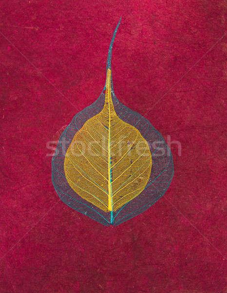 Magenta kézzel készített ázsiai papír levelek textúra Stock fotó © Arsgera