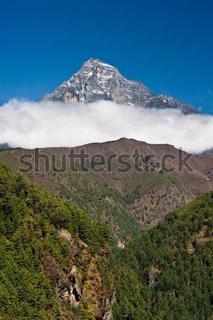 Himalaia paisagem montanha floresta viajar Nepal Foto stock © Arsgera