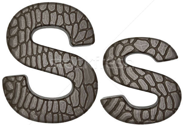 Alligator skin font S lowercase and capital letters Stock photo © Arsgera