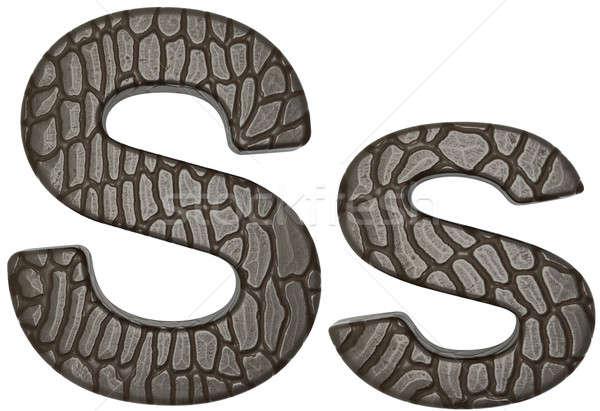 аллигатор кожи шрифт письма изолированный белый Сток-фото © Arsgera