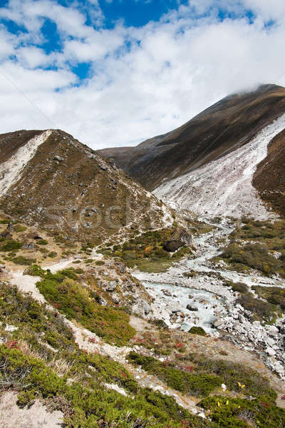 Stock photo: Himalaya landscape: Serpentine stream and mountains