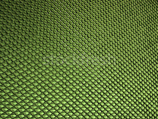 Green glossy  Scales texture or background Stock photo © Arsgera