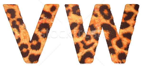 Leopard fur V and W letters isolated Stock photo © Arsgera