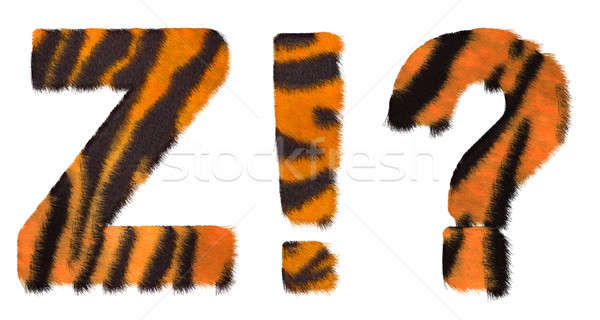 Tiger fell font Z and Wow What symbols Stock photo © Arsgera