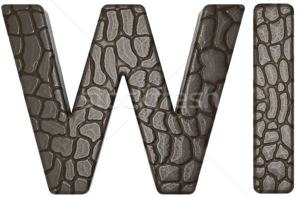 Alligator skin font w and i capital letters  Stock photo © Arsgera