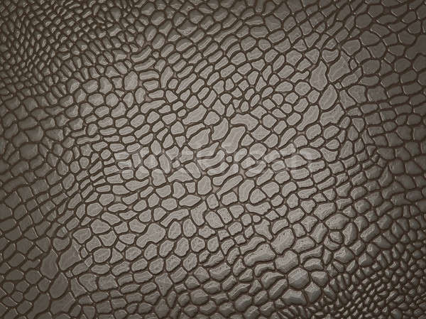 Alligator skin: useful as texture or background Stock photo © Arsgera