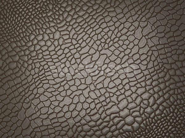 Timsah cilt yararlı doku büyük karar Stok fotoğraf © Arsgera