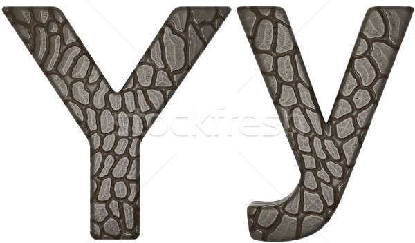 Alligator skin font Y lowercase and capital letters Stock photo © Arsgera