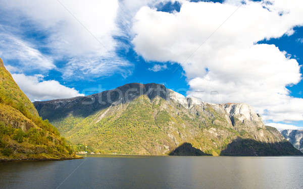 Mountains and fiords -  norwegian landscape Stock photo © Arsgera