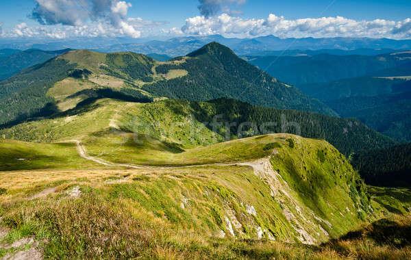 Carpathian mountains on the border of Ukraine  Stock photo © Arsgera