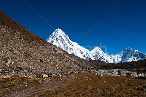 Pumori Peak in Himalaya mountains Stock photo © Arsgera