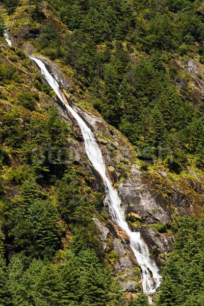 Гималаи пейзаж водопада лес деревья путешествия Сток-фото © Arsgera