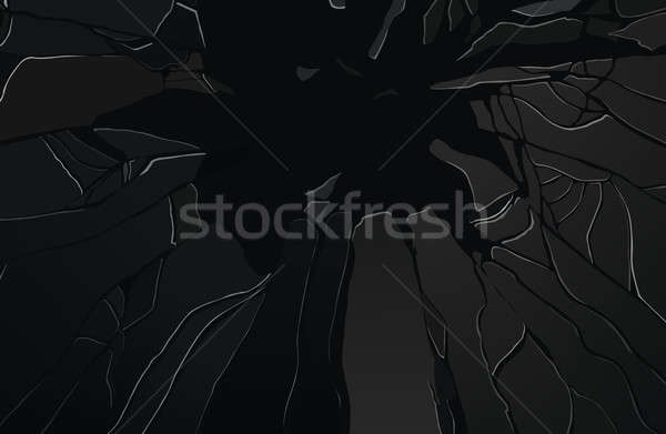 Sharp Pieces of shattered black glass Stock photo © Arsgera