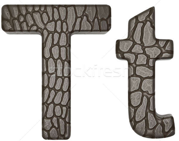 Alligator skin font T lowercase and capital letters Stock photo © Arsgera